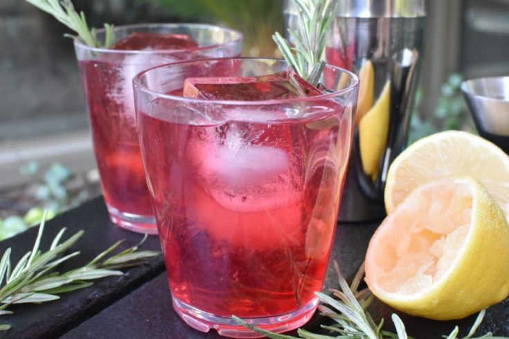 Cranberry Whiskey Sour - Camping Cocktails For Fall