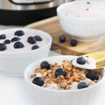 Instant Pot Blueberry Yogurt