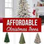 Affordable Christmas Trees