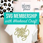 SVG Membership