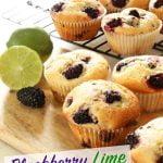 Blackberry Lime Muffin Recipe