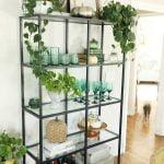 Vittsjo shelves decorated for fall